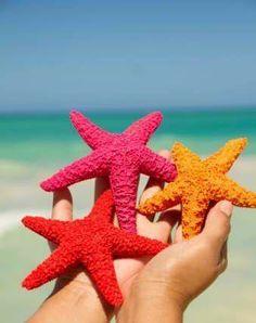 Colorful Starfish | Sea Soiree Inspiration
