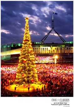 Christmas Tree at Parliament House Canberra - Australia