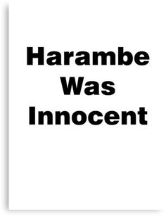 Harambe Was Innocent