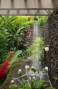 tropical-landscape-yard-with-outdoor-shower-and-trellis-i_g-IS9h7ybecuoiw80000000000-kh8NB.jpg (505×768)