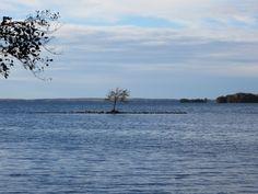 See 2 photos from 12 visitors to Säkylän Pyhäjärvi. 2 Photos, Homeland, Finland, Tourism, Beach, Places, Water, Outdoor, Turismo