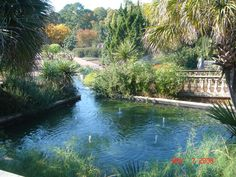 Botanical Gardens Venue