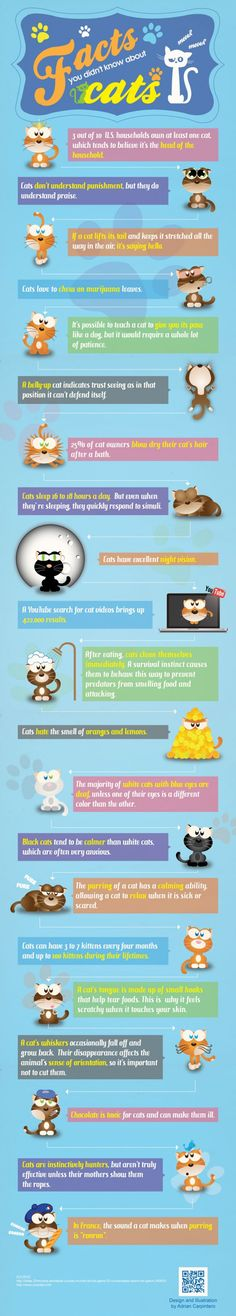 Interesting facts and most of them quite surprising!