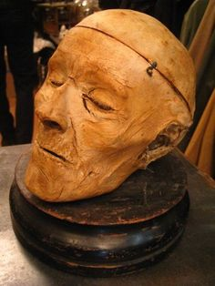 Mummified medical cadaver head. Probably from a medical school's collection. Most likely 19C.