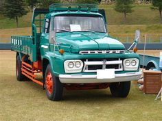 Isuzu Hood Truck pictures