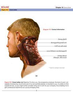Danny Quirk Anatomy Resumolio featured on Street Anatomy
