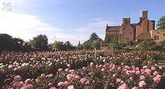 Chartwell, country home of Winston Churchill - read more about it at http://caro-interiors.com/2011/07/12/big-house-tour-chartwell/