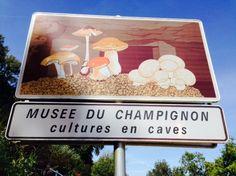 Mushroom Museum! Loire Valley, France