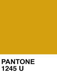 pantone 1245 - Google Search
