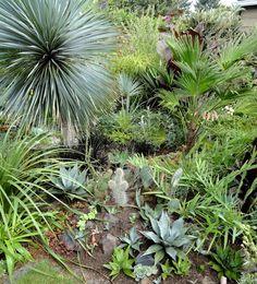 danger garden: My Garden, Tour 2015, Part 2 - The Private Parts