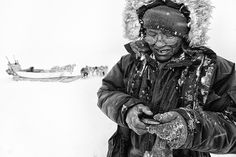 """A study of genetic sequences sheds light on the settling of the North American Arctic, from ancient """"Paleo-Eskimos"""" to the modern-day Inuit. Inuit People, Human Dna, Human Evolution, First Humans, Prehistory, First Nations, Anthropology, Genetics, New Pictures"""