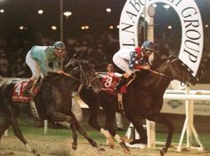 Cigar wins the first Dubai World Cup in 1996