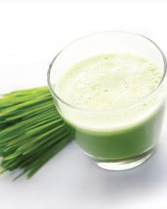 Frisk eller frossen wheatgrass Hørfrøolie 1 kiwi Isterninger Det hele blendes sammen