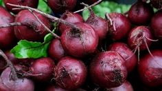 5 delicious ways to enjoy beets - Tanya Zuckerbrot for Fox News Health