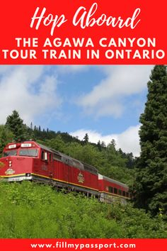 Hop Aboard the Agawa Canyon Tour Train in Northern Ontario! Check out untouched landscapes, incredible waterfalls, and see the natural muse of Canada's famous Group of Seven artists. Our post gives you the details! Alberta Canada, Quebec, Banff National Park, National Parks, Canada Winter, Group Of Seven Artists, Columbia, Canada Vancouver, Ontario Travel