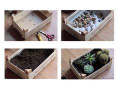 Cagette en bois pour un mini jardin d'intérieur