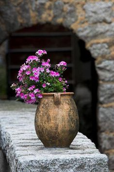 Gypsy Purple home. All Flowers, Flowers Nature, Beautiful Gardens, Beautiful Flowers, Plant Therapy, Old World Charm, Belle Photo, Garden Pots, Container Gardening