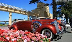 Some mid-week deco magic to share Heroes Book, Mountain High, All Things New, Homeland, Book 1, New Zealand, Antique Cars, Scenery, Wheels