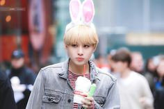 jungwoo as a bunny💖 #정우 #JUNGWOO