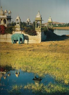 """Blue Elephant and Temple, Dungarpur, Rajasthan, India"" photographed by Tim Walker, 1999"