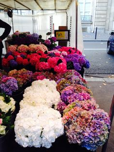 For the love of fashion, interiors design, sophisticated cuisine & simple pleasures. Sun And Water, Flower Market, Flower Pictures, Pretty Pictures, Simple Pleasures, Flower Power, Planting Flowers, Beautiful Flowers, Floral Wreath