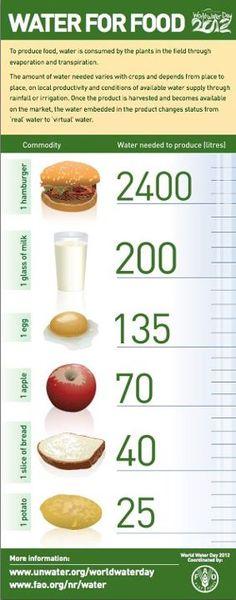 Hoeveel water is er nodig om voedsel te produceren? Zonder water geen eten!