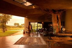 7 Amazing and Luxurious South Africa Safari Lodges! You need to see this! Africa Safari Lodge, Cool Pictures, Cool Photos, South Afrika, Game Lodge, Private Games, Game Reserve, African Safari, Throughout The World