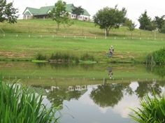 Stumped over what to do with your upcoming public holidays? Visit Brookwood Trout Farm for a relaxing getaway just minutes away from Joburg. Trout Farm, Public Holidays, Local Parks, Golf Courses, Picnic, Heaven, Relax, Painting, Life