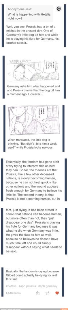 ((WHAT NO I DON'T THINK THE HETALIA FANDOM CAN EVER COPE WITH A CHARACTER DEATH NO NEVER)) <-- all people with white hair in anime and manga die. Im crying, but not surprised .