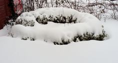Polar Vortex Collapse Leads To Snow Chaos | by Christian Behler | Age of Awareness | Feb, 2021 | Medium Weather Data, Extreme Weather, Snow Level, Arctic Air, Weather Storm, Sea Ice, Climate Change Effects, Germany Europe, Central Europe