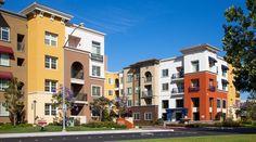 Cerano | Pet Friendly Apartments | Milpitas, CA