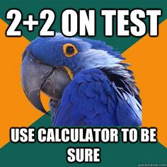 Can't even describe how true these Paranoid Parrot memes are!