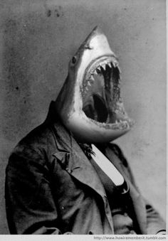 I just really dig any weird photoshopped sharks... that and weird photoshopped velociraptors... especially stalking Michael Buble...