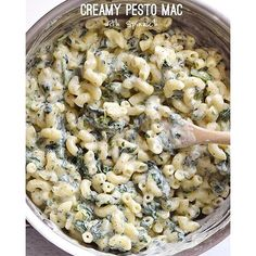 Creamy Pesto Mac With Spinach by @budgetbytes - Check out @budgetbytes for this full recipe & so much more on her blog. Direct link in her bio. - Serves: 6 Ingredients: 2 cups uncooked macaroni 2 Tbsp butter 2 Tbsp flour 2 cups whole milk  cup grated Romano or Parmesan  cup basil pesto  tsp salt Freshly cracked pepper  lb. frozen spinach - Full recipe with directions on @budgetbytes blog! Enjoy! by healthyminutemeals