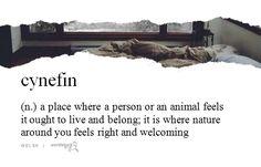Welsh word