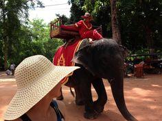 "Sam @ Cambodia ""want some elephant ride?"""