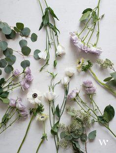 The Seasonal Flower Guide Series: Winter Florals