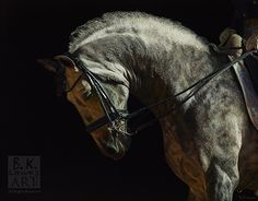 """With Grace by Bruce Lawes Oil ~ 40"""" x 50"""""""