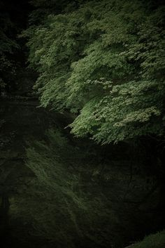 Kyoto, Japan 修学院離宮 on Flickr.