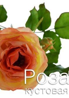 #ClippedOnIssuu from Мастер-класс по керамической флористике. Роза кустовая.