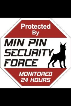 Min Pin Security. Awwwww that's so cute