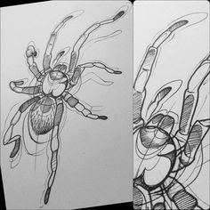 Dynamic sketching insects by elgnahk on deviantart for Solar plexus tattoo
