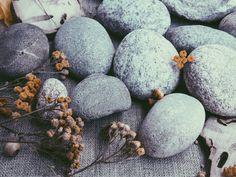 7 отметок «Нравится», 1 комментариев — Брызги  конфетти (@eclaboussures_de_confettis) в Instagram: «Цветы на камнях. #pictur_to_keep #tv_living #tv_nature #curated_nature #simpleandstill…»