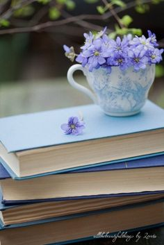 Serene, springtime beautiful shades of blue. #flowers #teacup #books #reading #spring #blue