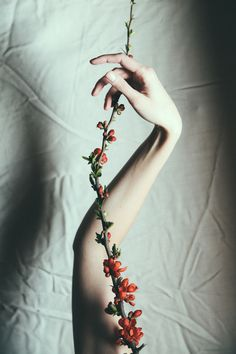 All my limbs can become trees by Anna O.