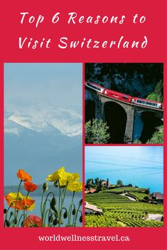 What is the best thing about Switzerland that attracts over billion visitors a year to this beautiful country of lakes and mountains located in the heart of Europe? Visit Switzerland, Heart Of Europe, Wellness Center, In The Heart, Travel Style, Lakes, Photo Credit, Attraction, Vacation