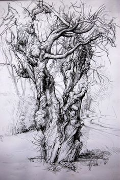 PrintMaking in the Somerset Levels, we interview Myrtle Pizzey - Artist Papers Landscape Sketch, Landscape Paintings, Tree Paintings, Pencil Drawings, Art Drawings, Tree Sketches, Nature Sketch, Mulberry Tree, A Level Art