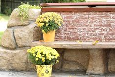 From retaining garden walls, which hold back earth or water, to walls that screen, or just ones that make for beautiful outdoor spaces, these DIY and shoppable garden walls will sit pretty in your yard far into the future. Garden Retaining Wall, Stone Retaining Wall, Diy Pallet Vertical Garden, Wall Trellis, Large Backyard, Backyard Ideas, Artificial Boxwood, Raised Garden Beds, Amazing Gardens