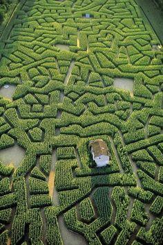 France. Labyrinthe de maïs de Cordes-sur-Ciel,