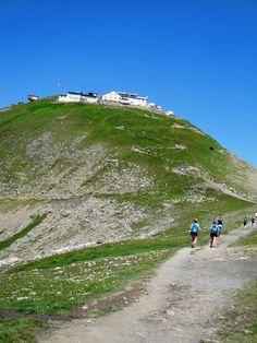 #Eiger #Trail 51Km 2014 #Faulhorn